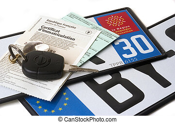 automobile registration, purchase of plates by Internet...