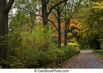 autumn colors in Stadspark, Groningen, Netherlands