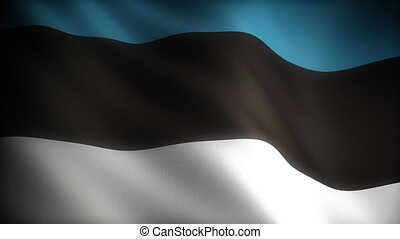 Flag of Estonia seamless
