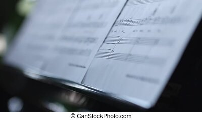 Music and woman practising - Music sheets and woman...