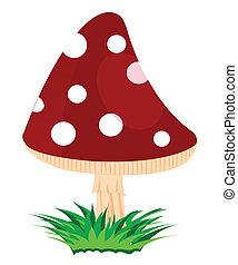Mushroom fly agaric - Illustration of the mushroom fly...