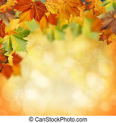 Natural beauty. Autumnal abstract backgrounds for your design