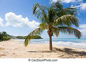 Friars bay on St Martin in Caribbean - Headland off Friars...