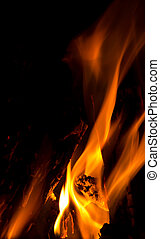 campfire flames - closeup of campfire logs and flames at...