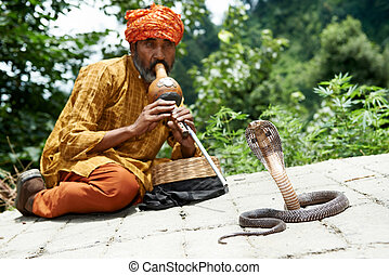charmer of snake in India - Indian Snake charmer adult man...