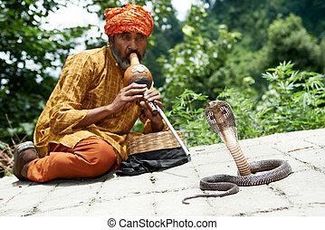 hombre encantador, serpiente, India