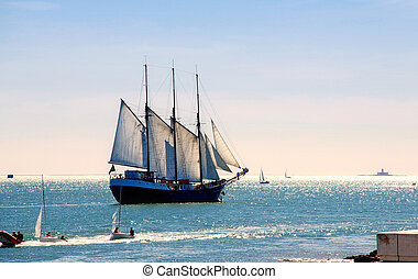 Sailing ship - Tall sail ship sailing on the Lisbon bay of...