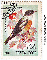 USSR - CIRCA 1981 : stamp printed in USSR show bird big...
