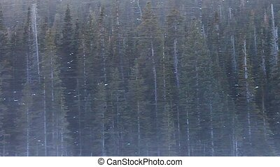 Rocky Mountain National Park - Blizzard conditions in a...