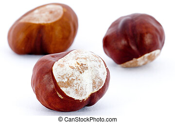 Chestnuts isolated on white background - Aesculus...