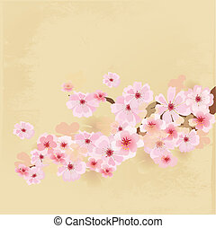 cherry blossoms on paper grunge