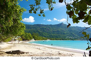 View over the amazing Beau Vallon bay with a few people...