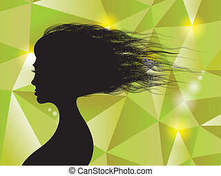 Beautiful woman hairs -silhouette illustration on shiny background