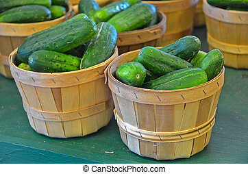 cucumbers in baskets - Fresh cucumbers in bushel baskets at...
