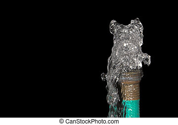 Garden Hose - Water spewing from a garden hose Conservation...