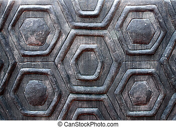 the wall turtle shell texture background