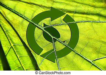 Recycling symbol and green leaf