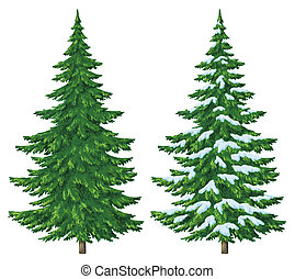 Christmas trees - Fir trees, summer and winter with snow,...