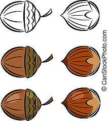 Cartoon set of vector images of hazelnut and acorn eps10