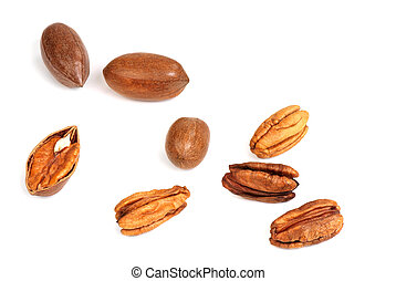 Pecans - Collection of pecan nuts in a shell and without it...