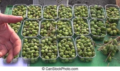 mini kiwi fruit (actinidia arguta)