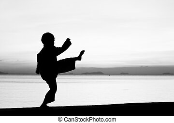 The boy - Silhouette taekwondo boy on the beach at dusk....