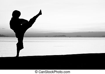 The boy - Silhouette taekwondo boy on the beach at dusk...