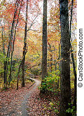 Fall in North Carolina - ,fotolia,canstock