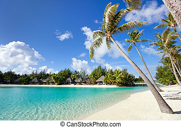 Beautiful beach on Bora Bora island in French Polynesia