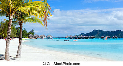 Bora Bora landscape - Stunning beach and beautiful view of...