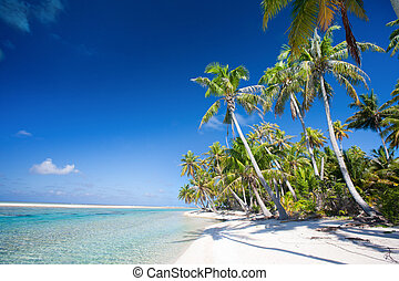 Perfect tropical beach - Beautiful beach at Tikehau atoll in...