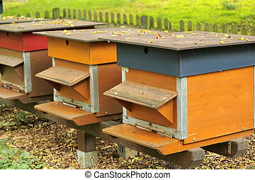 Colorful beehives in a row in the nature