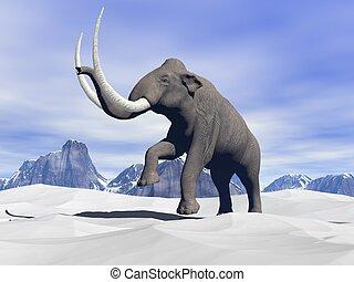 Mamut, nieve