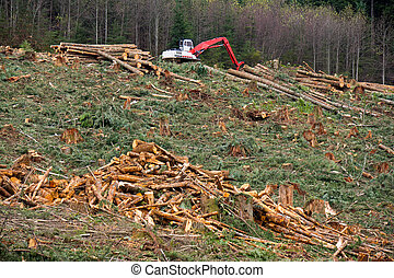 Clearcut Logging In Pacific Northwest. A debris pile is in...