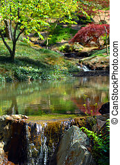 Serenity at Garvins Garden - Garvins Woodland Garden in Hot...