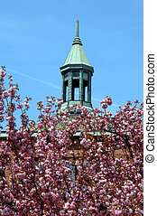 Church in Spring time - First Baptist Church in downtown...