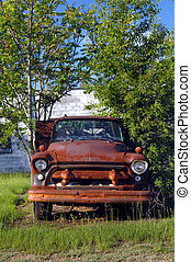 Discarded for junk - Rusting and overgrown Chevy truck sits...