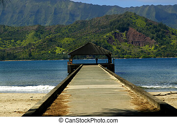 Admiring View of Hanalei Bay - Vacationers enjoy the view...