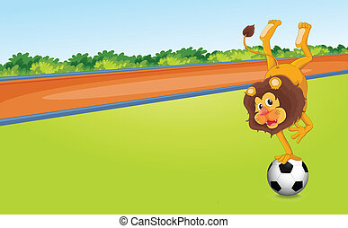 a lion and ball