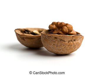 Walnut - Single opened walnut close up on white background.