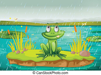 035 - illustration of a frog and a water on a white...