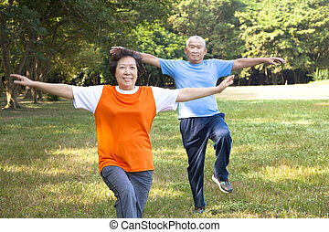 happy asian senior couple in the park