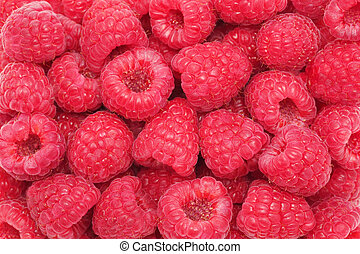 Ripe raspberries. Background - Background made from ripe,...