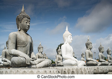 lot of Buddha Statue - buddha Statue in Thailand