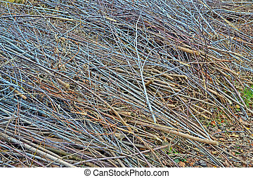 abstract brushwood heap, seasonal details - abstract wooden...