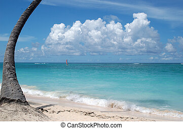 Punta Cana beach, Caribe, Republic Santo Domingo