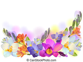 Horizontal background with freesia - Vector greeting...