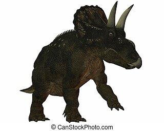 Diceratops-3D Dinosaur - 3D Render of an Dinosaur