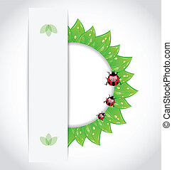Eco green leaves with ladybugs