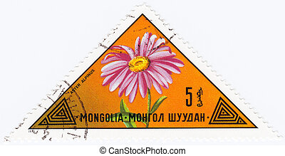MONGOLIA - CIRCA 1973 : stamp printed in Mongolia shows a...